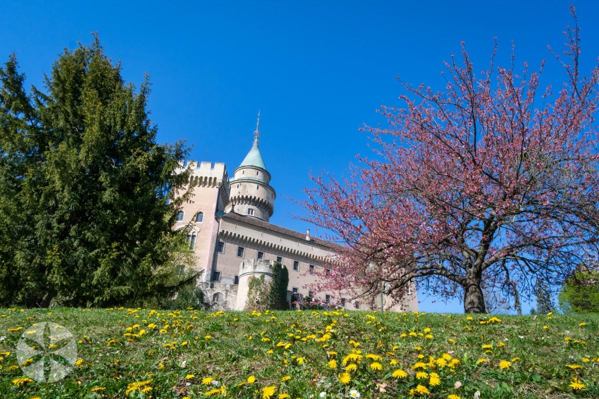 Kvíz - Príroda okolia Bojnického zámku